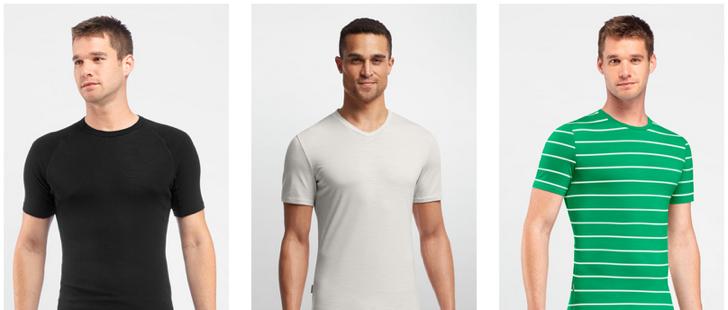 Icebreaker Tshirts