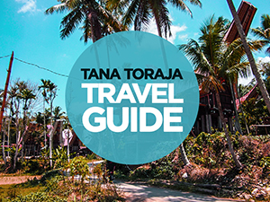 Tana Toraja Travel Guide