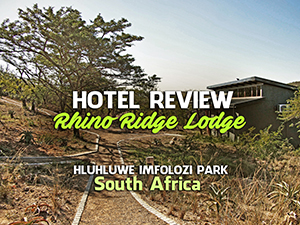 Lodge and safari review: Rhino Ridge Safari Lodge, Hluhluwe-Imfolozi Park – South Africa