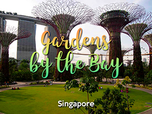 Gardens by the Bay: A wonderful urban park in Singapore