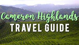 Cameron Highlands Travel Guide
