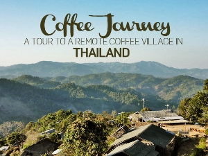 Coffee Journey: A tour to a remote coffee village in Thailand