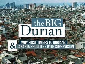 The Big Durian