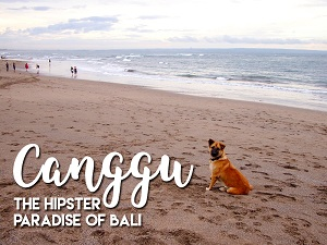 Canggu - the hipster paradise of Bali