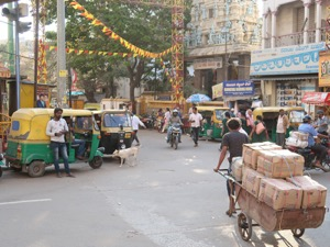 Notes on Bengaluru (The Garden City) – Old city mayhem, transport apps, and fancy airports